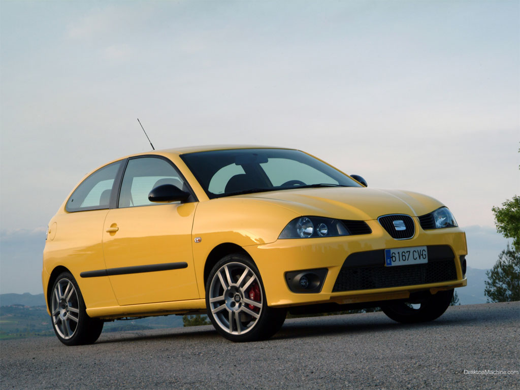 2007 seat ibiza cupra 1 9 tdi related infomation. Black Bedroom Furniture Sets. Home Design Ideas