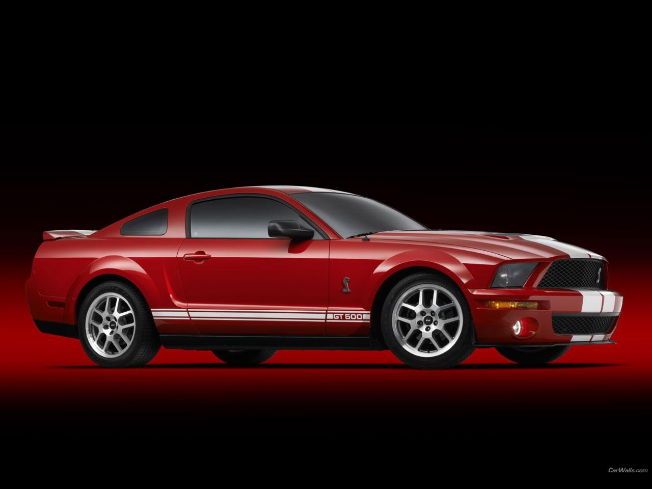 Shelby GT500 1280x960 b72 - Tapety na pulpit - samochody sportowe, luksusowe, supersamochody
